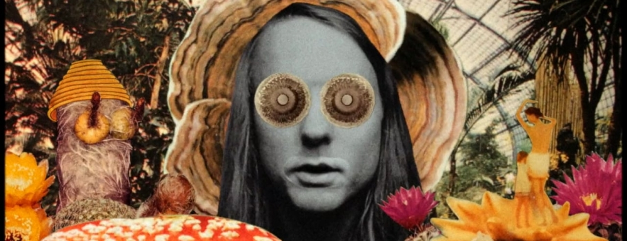 Andy Shauf mergulha The Party em psicodelia