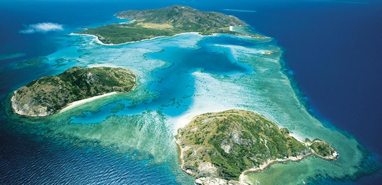 Conheça o espetáculo natural da Barreira de Corais